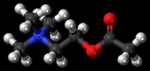 acetylcholine-872247_640